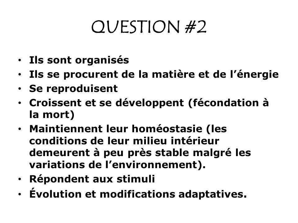QUESTION #2 Ils sont organisés Ils se procurent de la matière et de lénergie Se reproduisent Croissent et se développent (fécondation à la mort) Maint