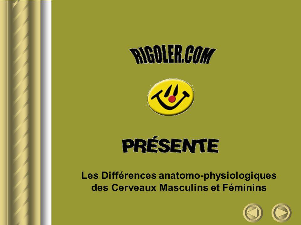 Les Différences anatomo-physiologiques des Cerveaux Masculins et Féminins