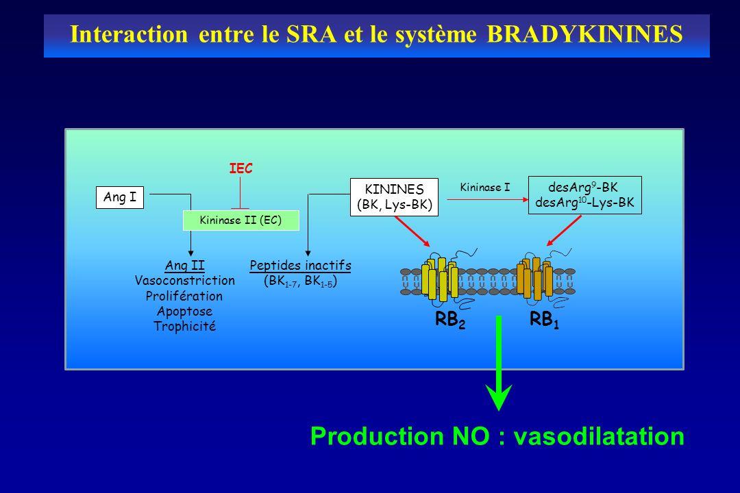 desArg 9 -BK desArg 10 -Lys-BK Kininase I RB 1 RB 2 KININES (BK, Lys-BK) Ang I Peptides inactifs (BK 1-7, BK 1-5 ) Ang II Vasoconstriction Proliférati