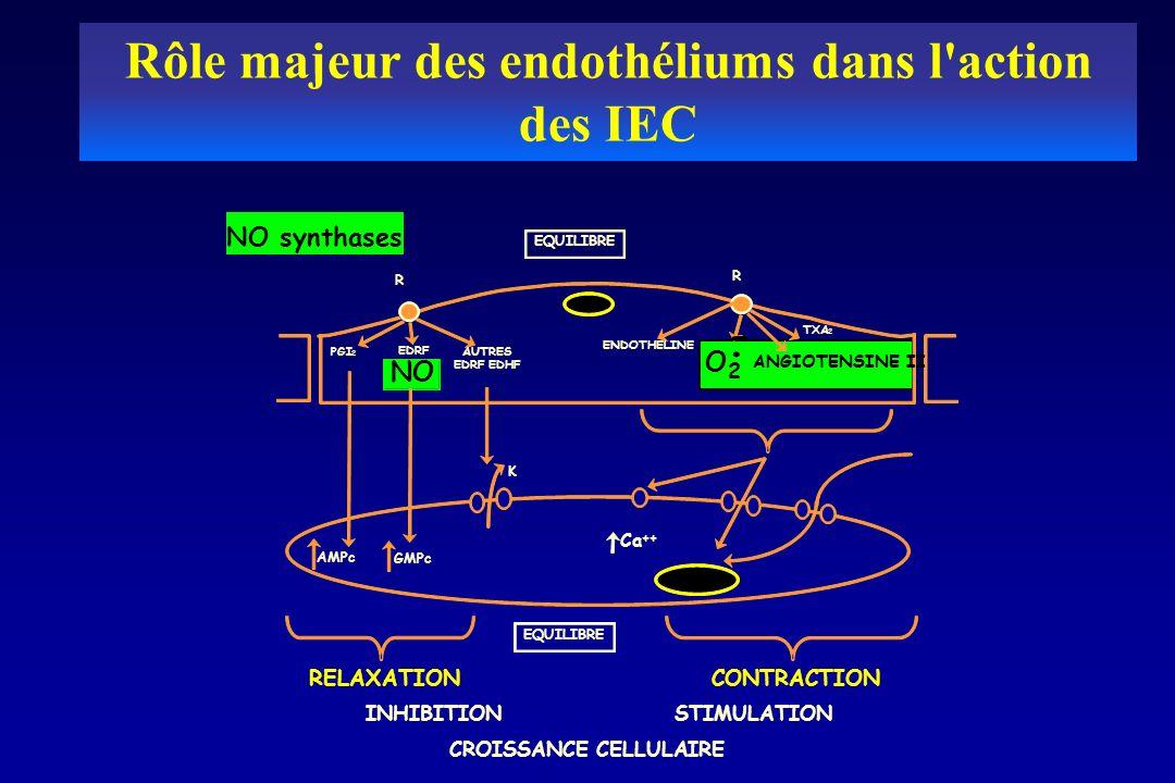 Rôle majeur des endothéliums dans l'action des IEC EQUILIBRE R R PGI 2 EDRF NO AUTRES EDRF EDHF ENDOTHELINE ANGIOTENSINE II TXA 2 O 2 -. K Ca ++ GMPc