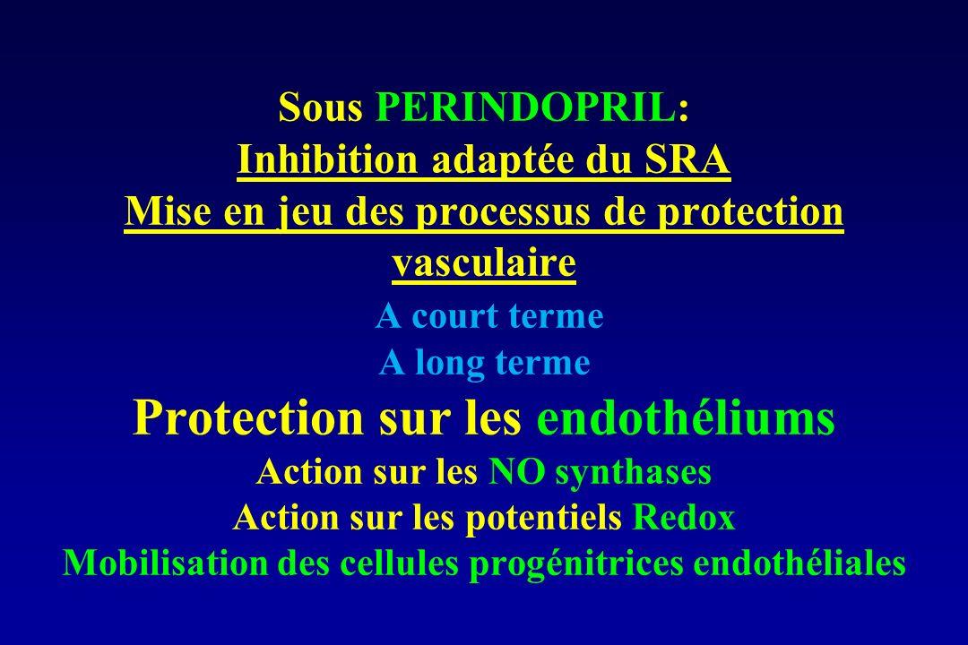 Sous PERINDOPRIL: Inhibition adaptée du SRA Mise en jeu des processus de protection vasculaire A court terme A long terme Protection sur les endothéli