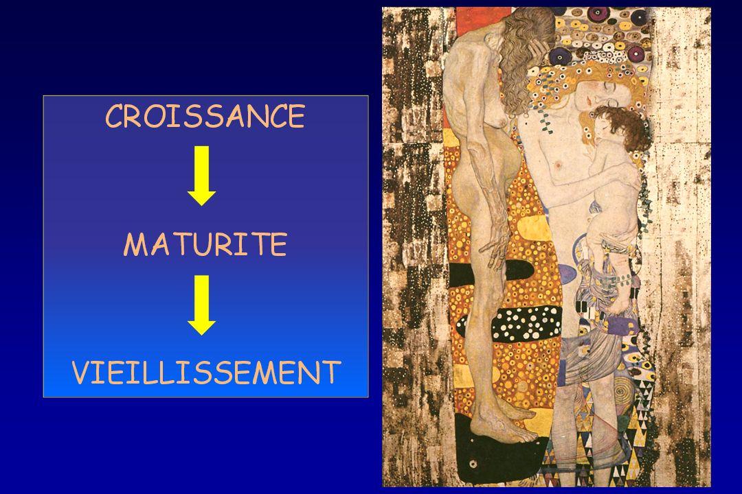 Histomorphométrie Jeunes 2 mois Adultes 6 mois Vieux 21 mois HE X20 HE X200 Oudot et al. FRBM 2006