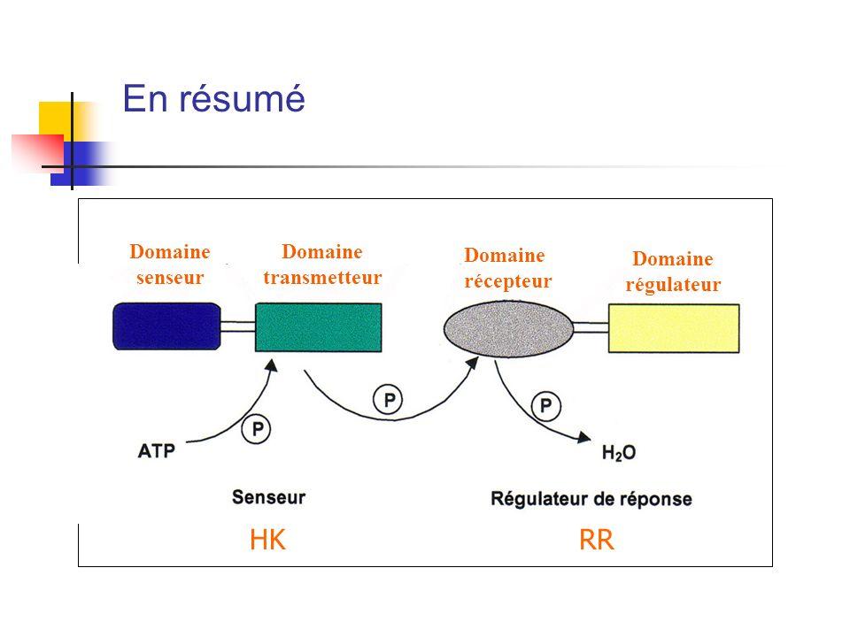 En résumé Domaine senseur Domaine transmetteur Domaine récepteur Domaine régulateur HKRR
