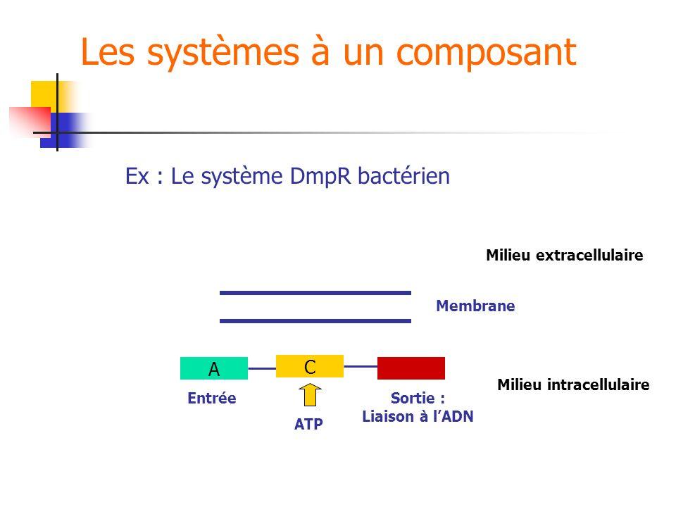 Les systèmes à un composant Milieu extracellulaire Milieu intracellulaire Ex : Le système DmpR bactérien Membrane A EntréeSortie : Liaison à lADN C AT