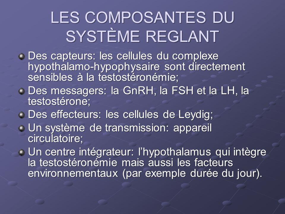LES COMPOSANTES DU SYSTÈME REGLANT Des capteurs: les cellules du complexe hypothalamo-hypophysaire sont directement sensibles à la testostéronémie; De