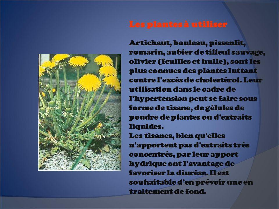 Les plantes à utiliser Artichaut, bouleau, pissenlit, romarin, aubier de tilleul sauvage, olivier (feuilles et huile), sont les plus connues des plant