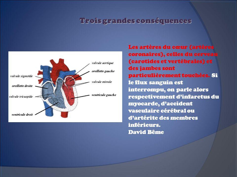 Trois grandes conséquences Les artères du cœur (artères coronaires), celles du cerveau (carotides et vertébrales) et des jambes sont particulièrement