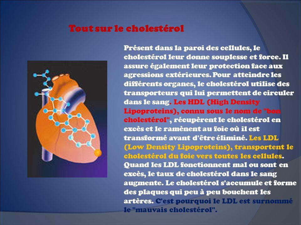 Tout sur le cholestérol Présent dans la paroi des cellules, le cholestérol leur donne souplesse et force. Il assure également leur protection face aux