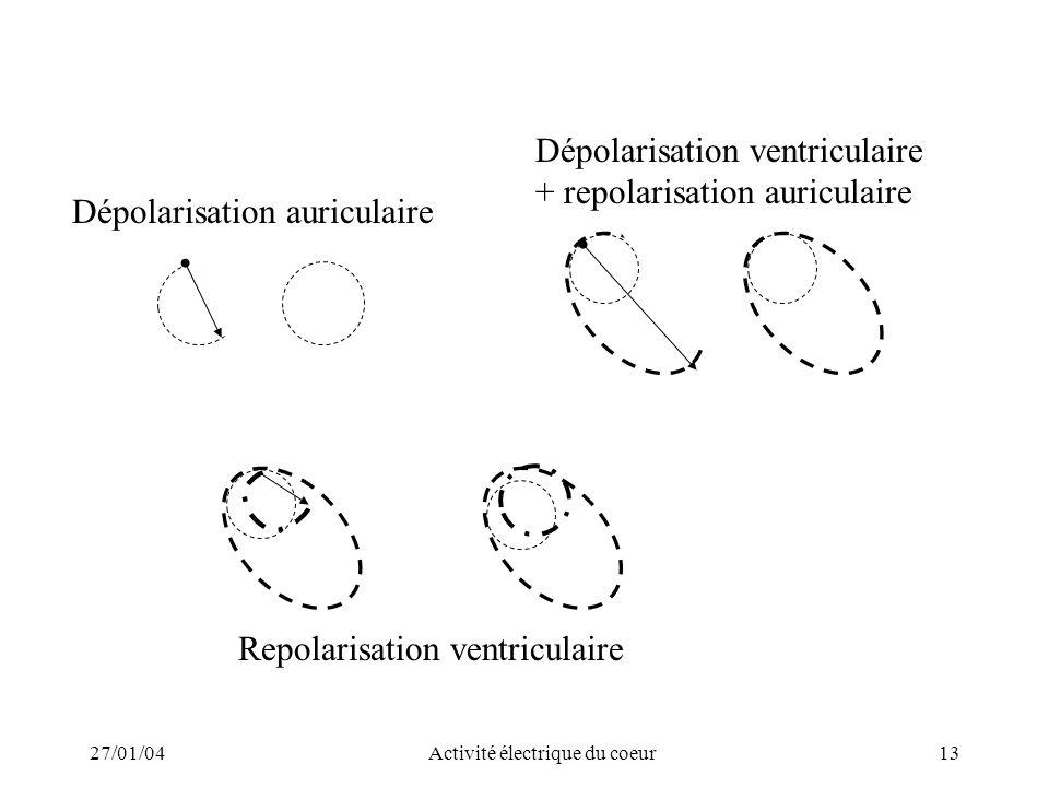 27/01/04Activité électrique du coeur13 Dépolarisation auriculaire Dépolarisation ventriculaire + repolarisation auriculaire Repolarisation ventriculai