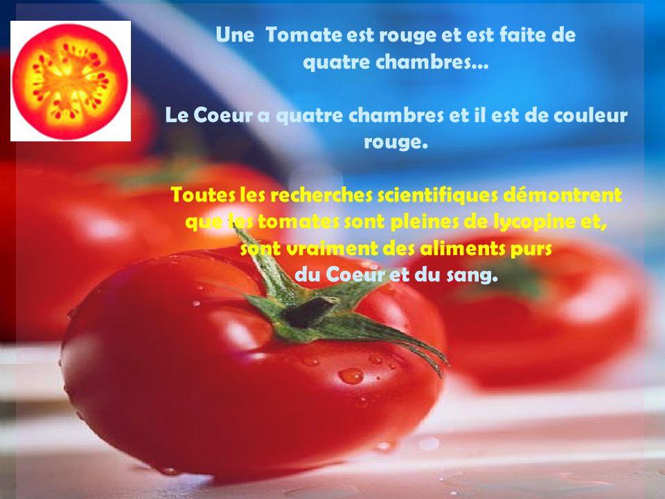 Une Tomate est rouge et est faite de quatre chambres… Le Coeur a quatre chambres et il est de couleur rouge.