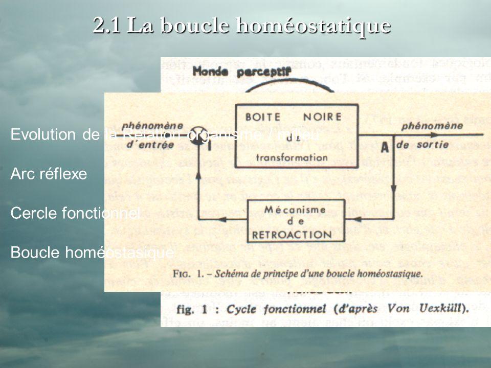 2.1 La boucle homéostatique >> Arc Réflexe Récepteur Effecteur Cellule Sensorielle Cellule Motrice Evolution de la Relation organisme / milieu Arc réflexe Cercle fonctionnel Boucle homéostasique