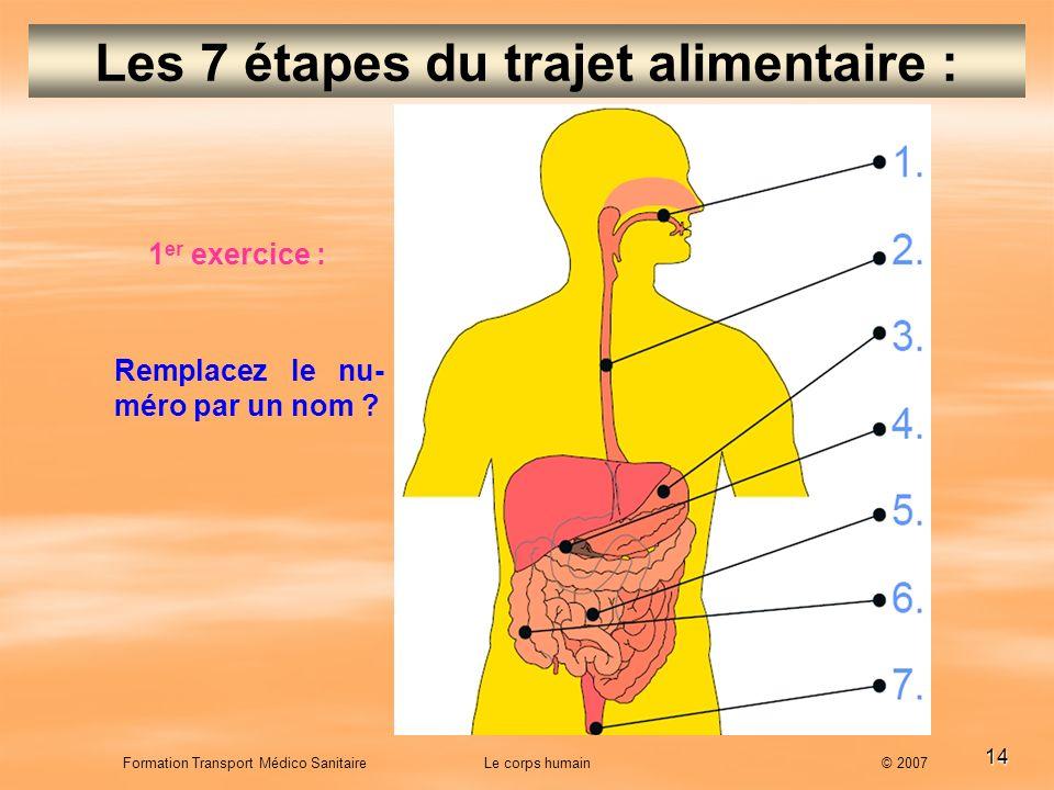 14 Formation Transport Médico Sanitaire Le corps humain © 2007 Les 7 étapes du trajet alimentaire : 1 er exercice : Remplacez le nu- méro par un nom ?