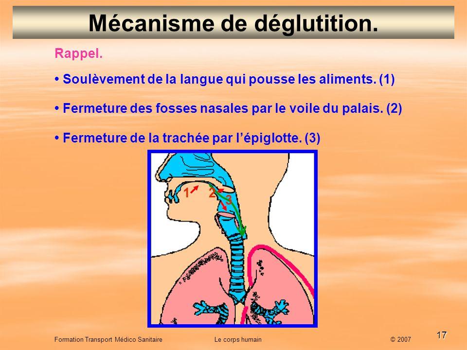 17 Formation Transport Médico Sanitaire Le corps humain © 2007 Mécanisme de déglutition. Rappel. Soulèvement de la langue qui pousse les aliments. (1)