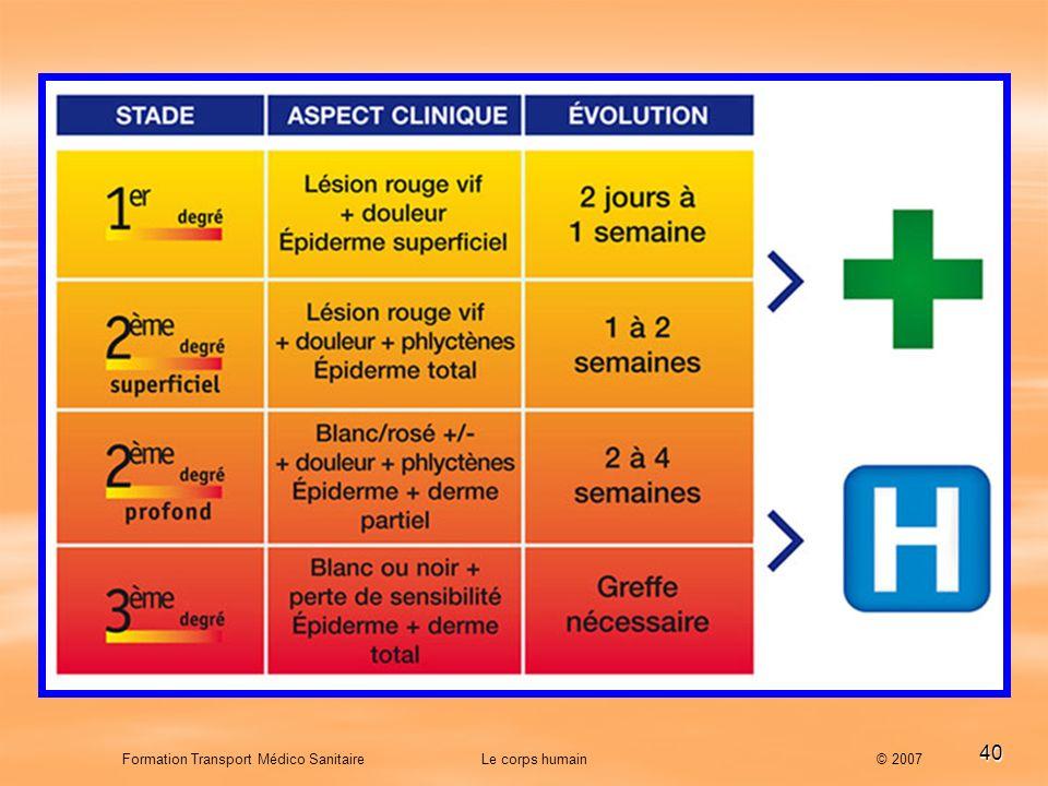 40 Formation Transport Médico Sanitaire Le corps humain © 2007