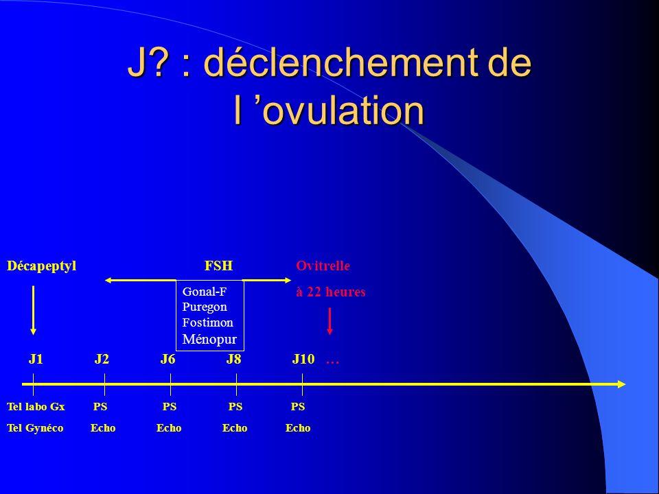 J? : déclenchement de l ovulation DécapeptylFSH Ovitrelle à 22 heures Tel labo Gx PS PS PS PS Tel Gynéco Echo Echo Echo Echo Gonal-F Puregon Fostimon