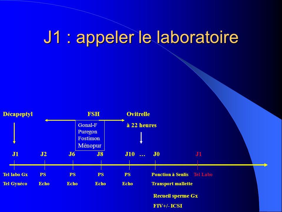 J1 : appeler le laboratoire DécapeptylFSH Ovitrelle à 22 heures Tel labo Gx PS PS PS PS Ponction à Senlis Tel Labo Tel Gynéco Echo Echo Echo Echo Transport mallette Gonal-F Puregon Fostimon Ménopur Recueil sperme Gx FIV+/- ICSI J1J2J6J8J10 …J0 J1