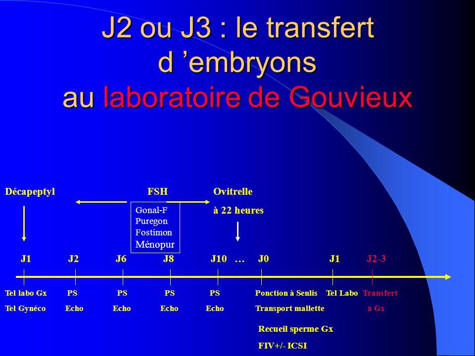 J2 ou J3 : le transfert d embryons au laboratoire de Gouvieux DécapeptylFSH Ovitrelle à 22 heures Tel labo Gx PS PS PS PS Ponction à Senlis Tel Labo Transfert Tel Gynéco Echo Echo Echo Echo Transport mallette à Gx Gonal-F Puregon Fostimon Ménopur Recueil sperme Gx FIV+/- ICSI J1J2J6J8J10 …J0 J1 J2-3
