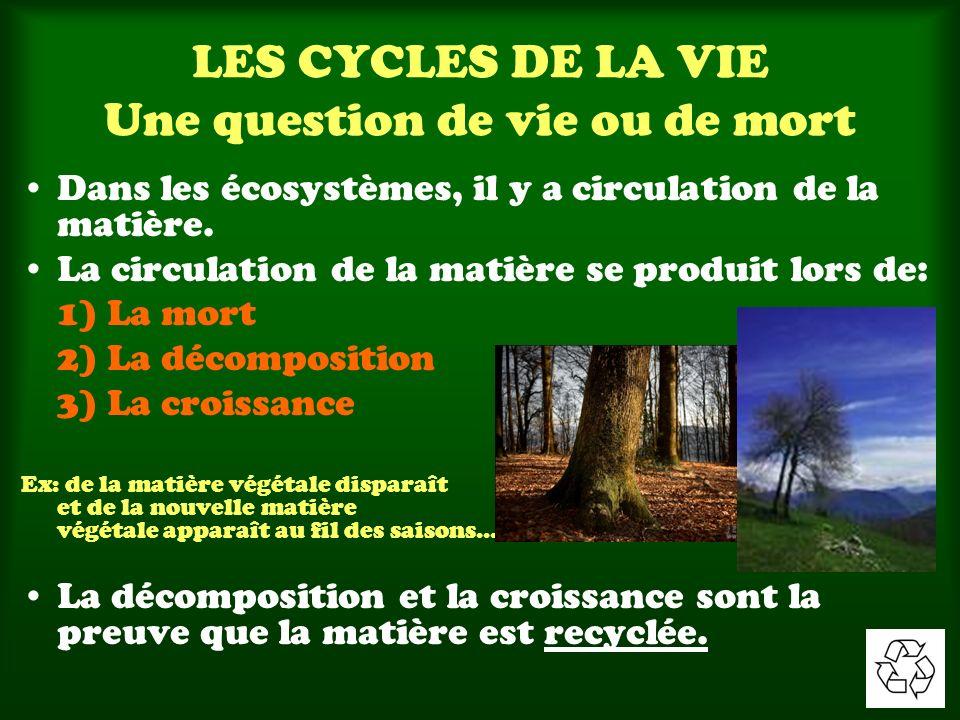 LES CYCLES DE LA VIE Une question de vie ou de mort Dans les écosystèmes, il y a circulation de la matière. La circulation de la matière se produit lo