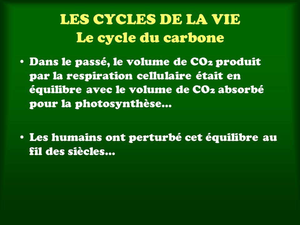 Dans le passé, le volume de CO 2 produit par la respiration cellulaire était en équilibre avec le volume de CO 2 absorbé pour la photosynthèse...