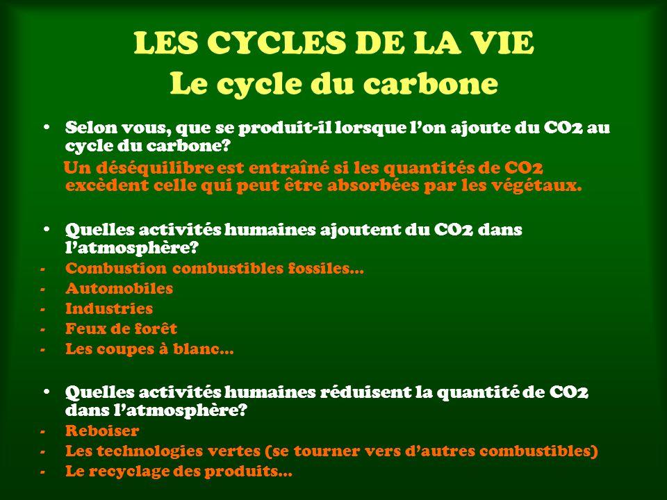 LES CYCLES DE LA VIE Le cycle du carbone Selon vous, que se produit-il lorsque lon ajoute du CO2 au cycle du carbone? Un déséquilibre est entraîné si