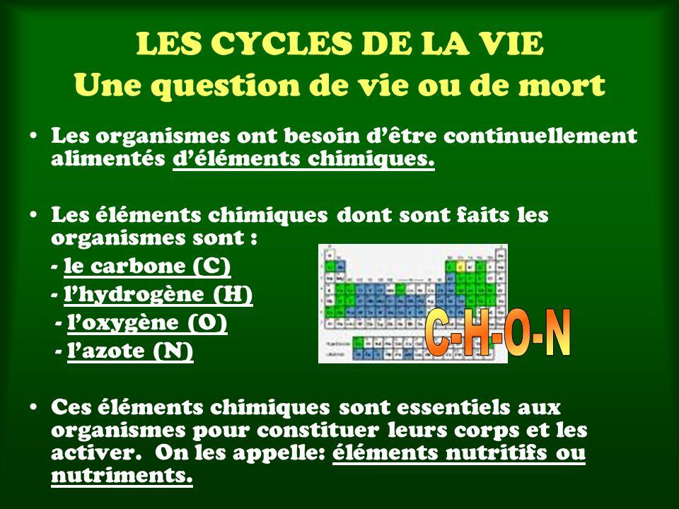 LES CYCLES DE LA VIE Une question de vie ou de mort Les organismes ont besoin dêtre continuellement alimentés déléments chimiques. Les éléments chimiq