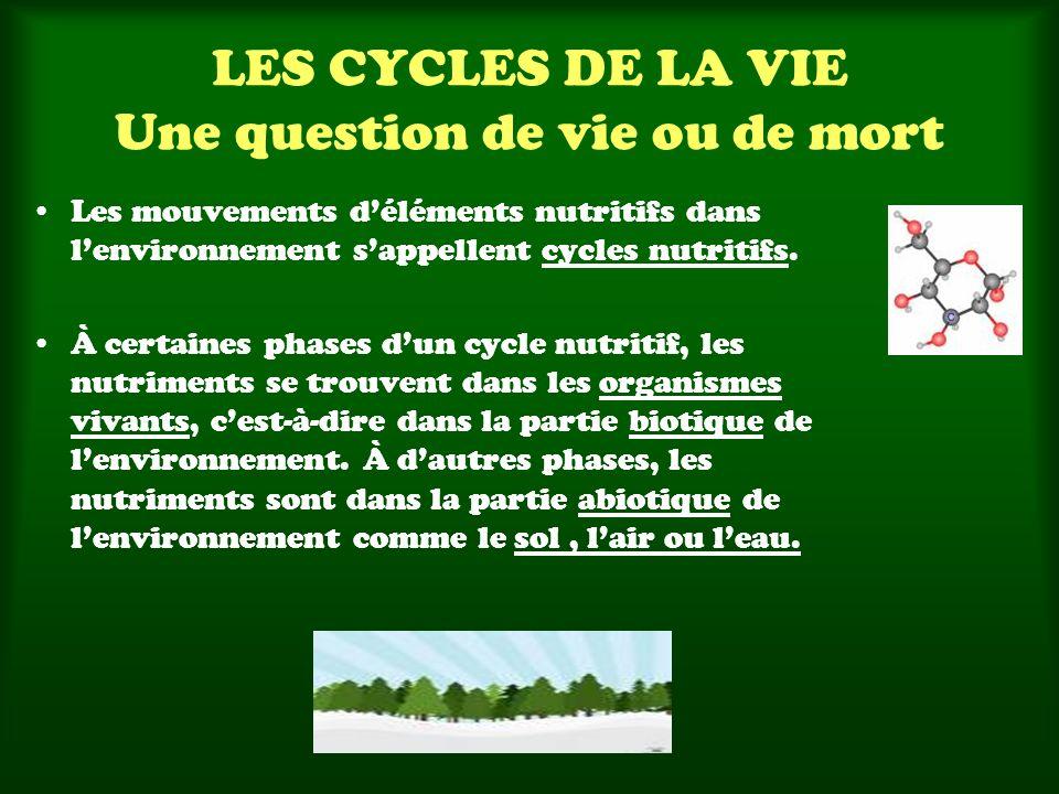 LES CYCLES DE LA VIE Une question de vie ou de mort Les mouvements déléments nutritifs dans lenvironnement sappellent cycles nutritifs. À certaines ph