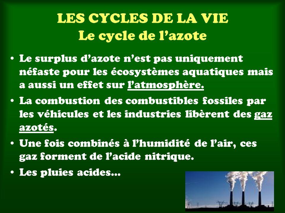 LES CYCLES DE LA VIE Le cycle de lazote Le surplus dazote nest pas uniquement néfaste pour les écosystèmes aquatiques mais a aussi un effet sur latmosphère.