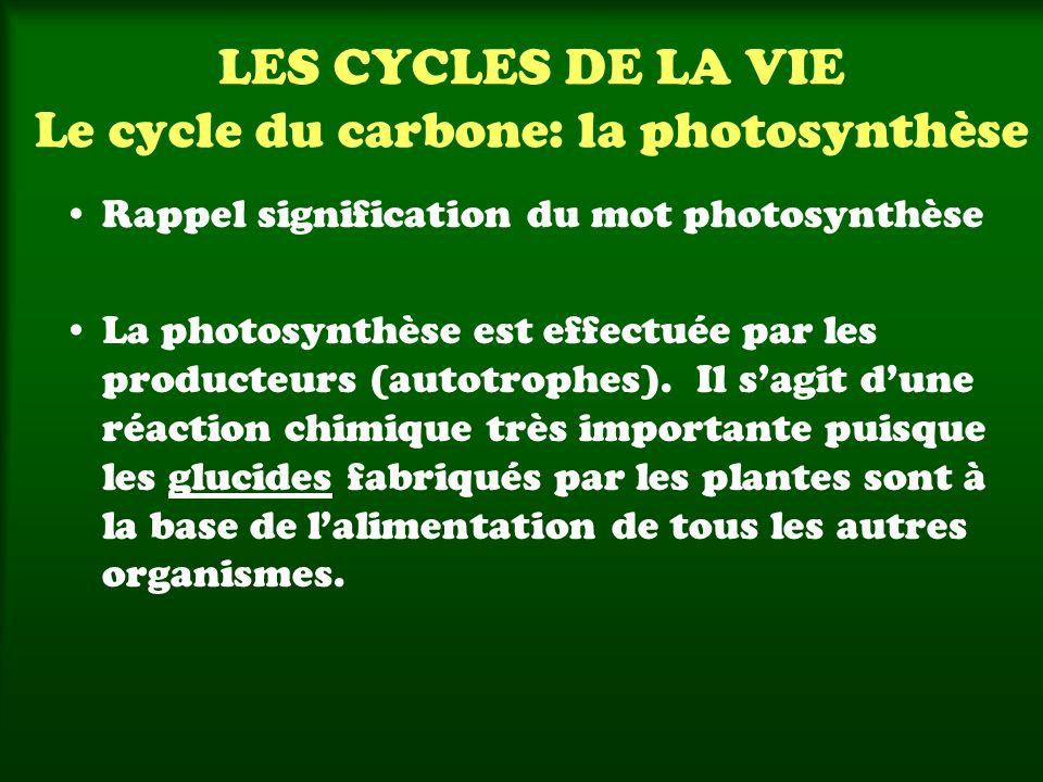 LES CYCLES DE LA VIE Le cycle du carbone: la photosynthèse Réaction chimique qui se déroule dans la cellule végétale (chloroplastes) Gaz carbonique Eau Énergie lumineuse Glucides Oxygène Intrants Extrants 6 CO 2 + 6 H 2 O + énergieC 6 H 12 O 6 + 6 O 2