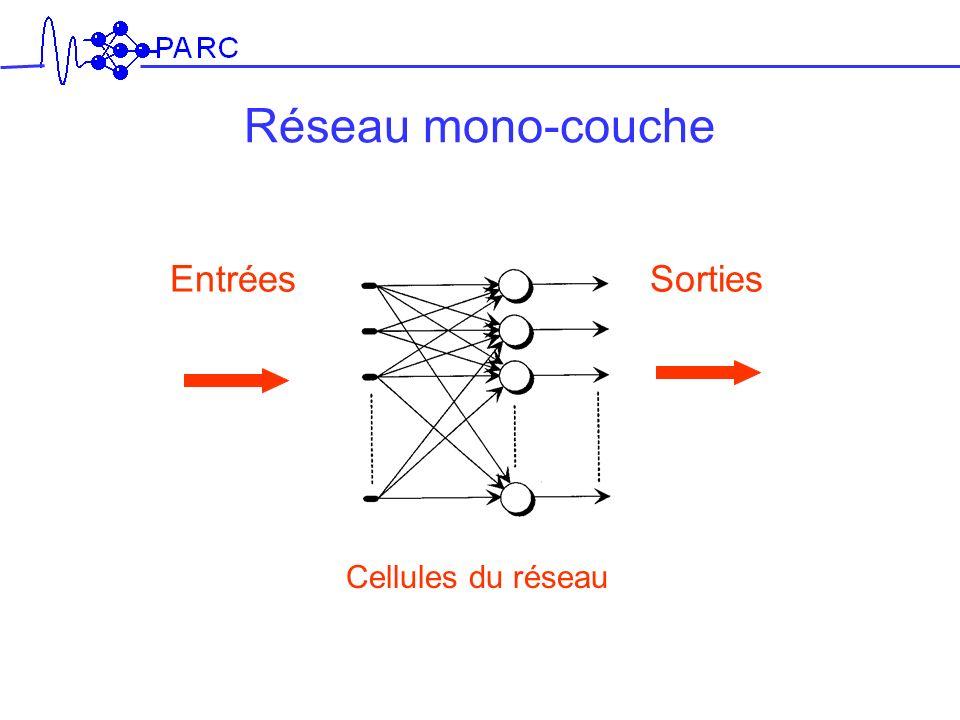 Entrées Cellules du réseau Sorties Réseau mono-couche