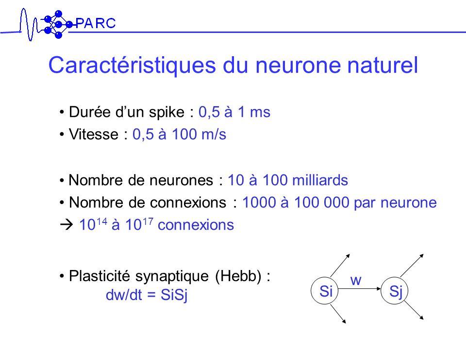 Durée dun spike : 0,5 à 1 ms Vitesse : 0,5 à 100 m/s Nombre de neurones : 10 à 100 milliards Nombre de connexions : 1000 à 100 000 par neurone 10 14 à
