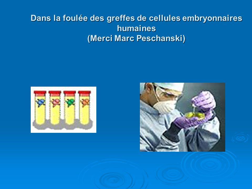 Dans la foulée des greffes de cellules embryonnaires humaines (Merci Marc Peschanski)
