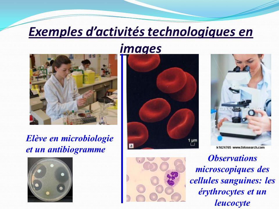 Exemples dactivités technologiques en images Elève en microbiologie et un antibiogramme Observations microscopiques des cellules sanguines: les érythr