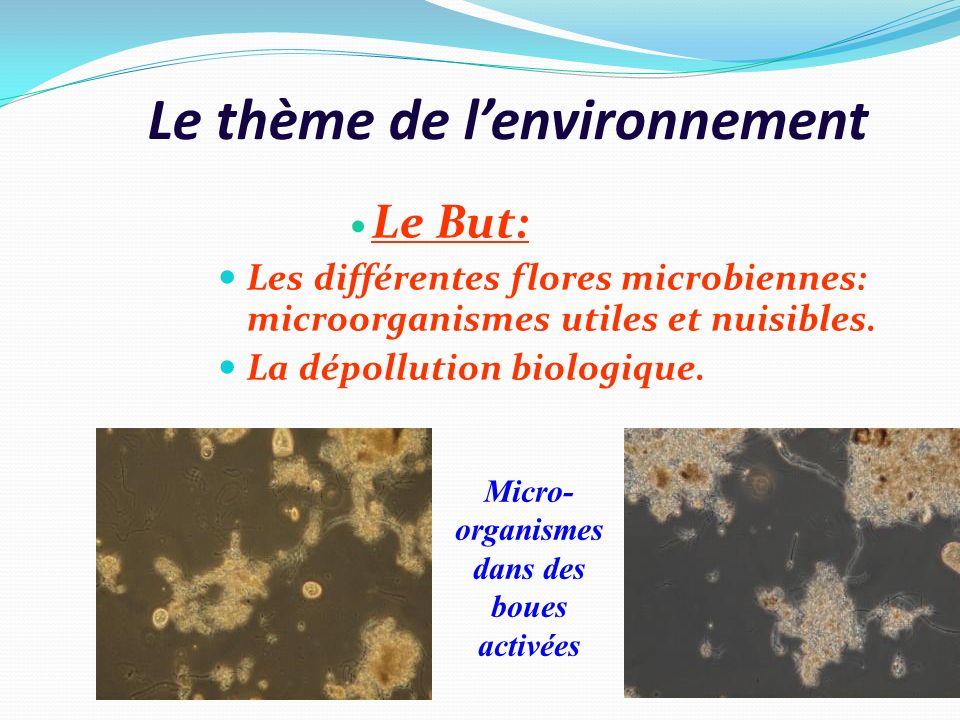 Le thème de lenvironnement Le But: Les différentes flores microbiennes: microorganismes utiles et nuisibles. La dépollution biologique. Micro- organis