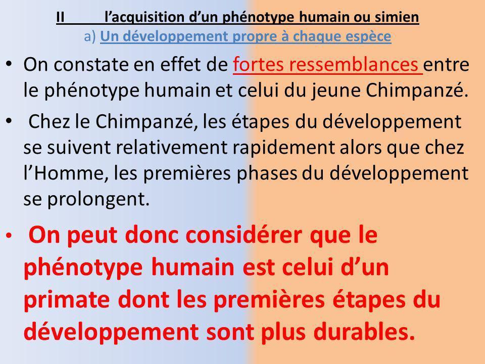 Le document 2 précise en quoi consistent ces différences en prenant lexemple du chromosome 2.