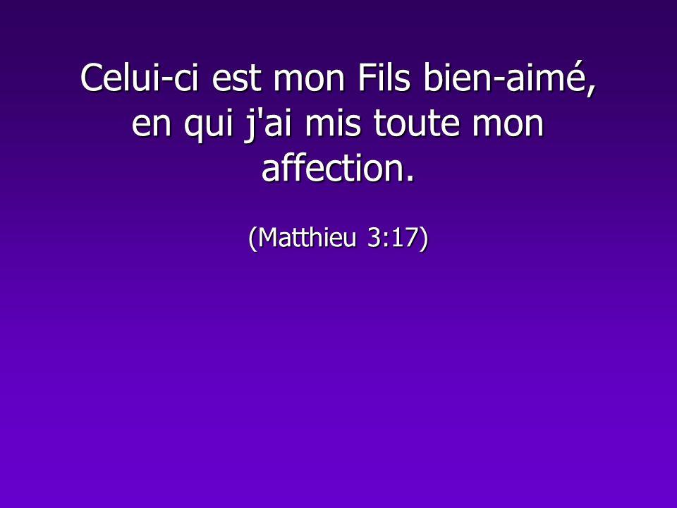 La parole dite à Jésus au Jourdain : « Celui-ci est mon Fils bien-aimé, objet de mon affection », embrasse l humanité tout entière.