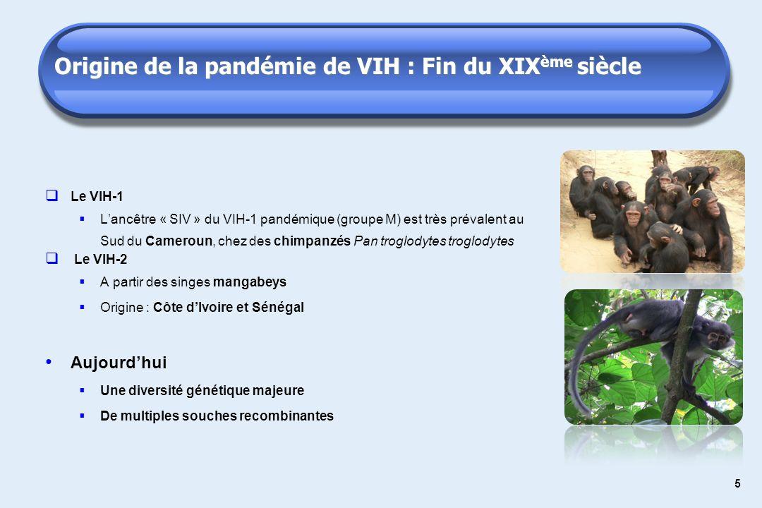 5 Origine de la pandémie de VIH : Fin du XIX ème siècle Le VIH-1 Lancêtre « SIV » du VIH-1 pandémique (groupe M) est très prévalent au Sud du Cameroun