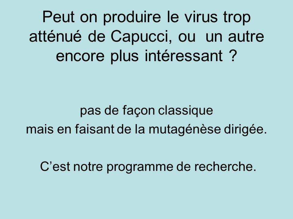 Peut on produire le virus trop atténué de Capucci, ou un autre encore plus intéressant ? pas de façon classique mais en faisant de la mutagénèse dirig