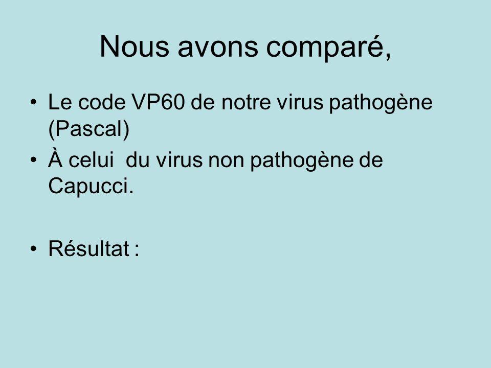 Le code VP60 de notre virus pathogène (Pascal) À celui du virus non pathogène de Capucci. Résultat : Nous avons comparé,