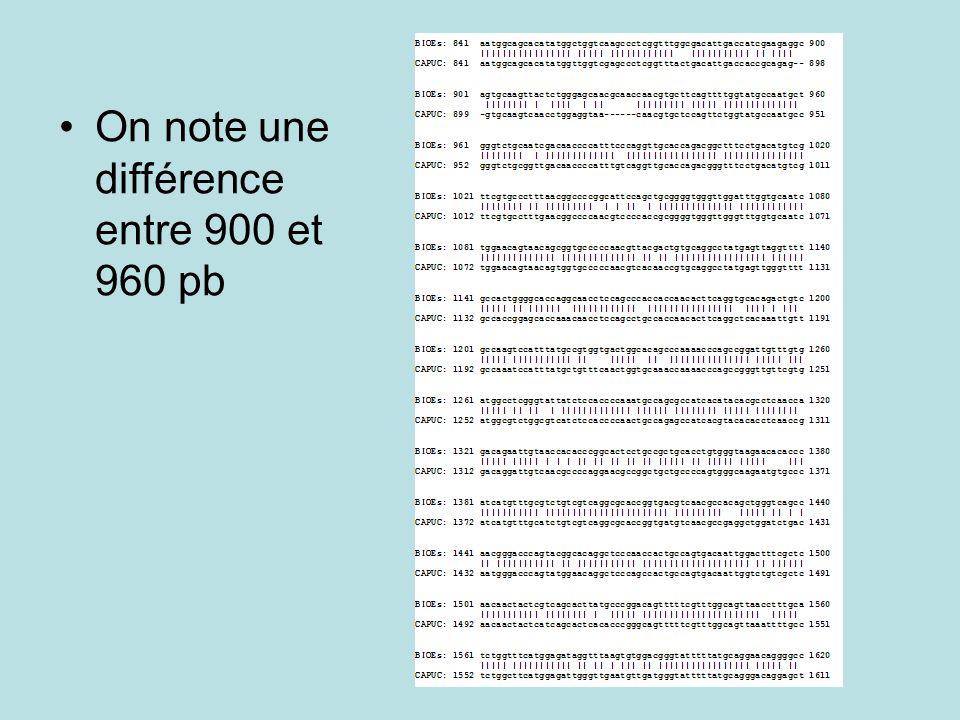 On note une différence entre 900 et 960 pb