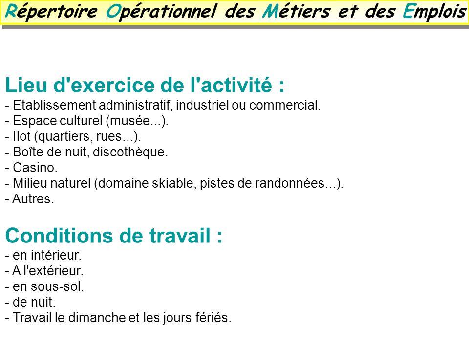 Lieu d'exercice de l'activité : - Etablissement administratif, industriel ou commercial. - Espace culturel (musée...). - Ilot (quartiers, rues...). -