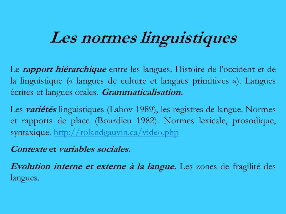 Les normes linguistiques Le rapport hiérarchique entre les langues. Histoire de loccident et de la linguistique (« langues de culture et langues primi