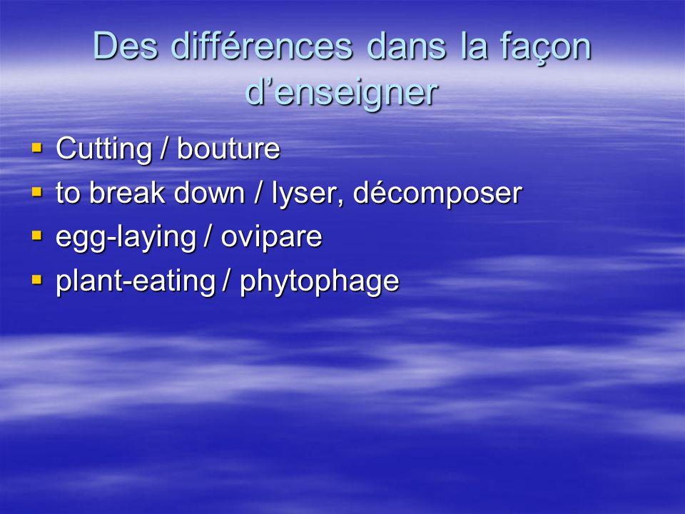 Des différences dans la façon denseigner Cutting / bouture Cutting / bouture to break down / lyser, décomposer to break down / lyser, décomposer egg-laying / ovipare egg-laying / ovipare plant-eating / phytophage plant-eating / phytophage