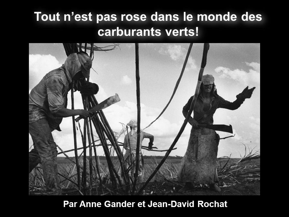 Tout nest pas rose dans le monde des carburants verts! Par Anne Gander et Jean-David Rochat