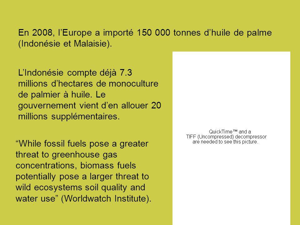 LIndonésie compte déjà 7.3 millions dhectares de monoculture de palmier à huile.