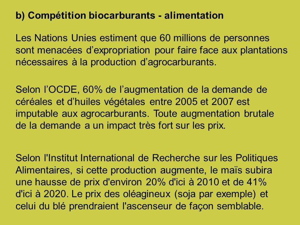 b) Compétition biocarburants - alimentation Les Nations Unies estiment que 60 millions de personnes sont menacées dexpropriation pour faire face aux plantations nécessaires à la production dagrocarburants.