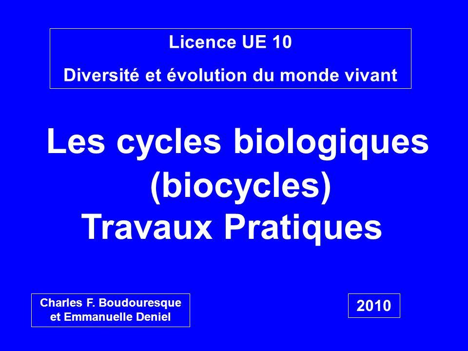 Licence UE 10 Diversité et évolution du monde vivant Les cycles biologiques (biocycles) Travaux Pratiques Charles F. Boudouresque et Emmanuelle Deniel