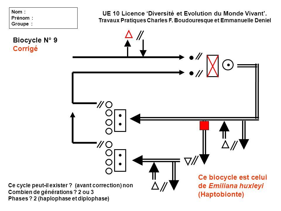 Ce biocycle est celui de Emiliana huxleyi (Haptobionte) Ce cycle peut-il exister ? (avant correction) non Combien de générations ? 2 ou 3 Phases ? 2 (