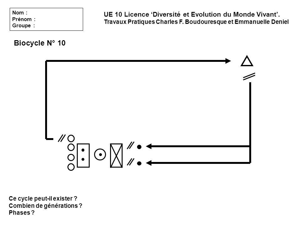 Ce cycle peut-il exister ? Combien de générations ? Phases ? UE 10 Licence Diversité et Evolution du Monde Vivant. Travaux Pratiques Charles F. Boudou