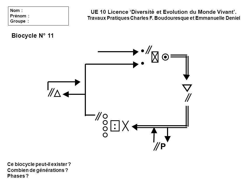 Ce biocycle peut-il exister ? Combien de générations ? Phases ? UE 10 Licence Diversité et Evolution du Monde Vivant. Travaux Pratiques Charles F. Bou