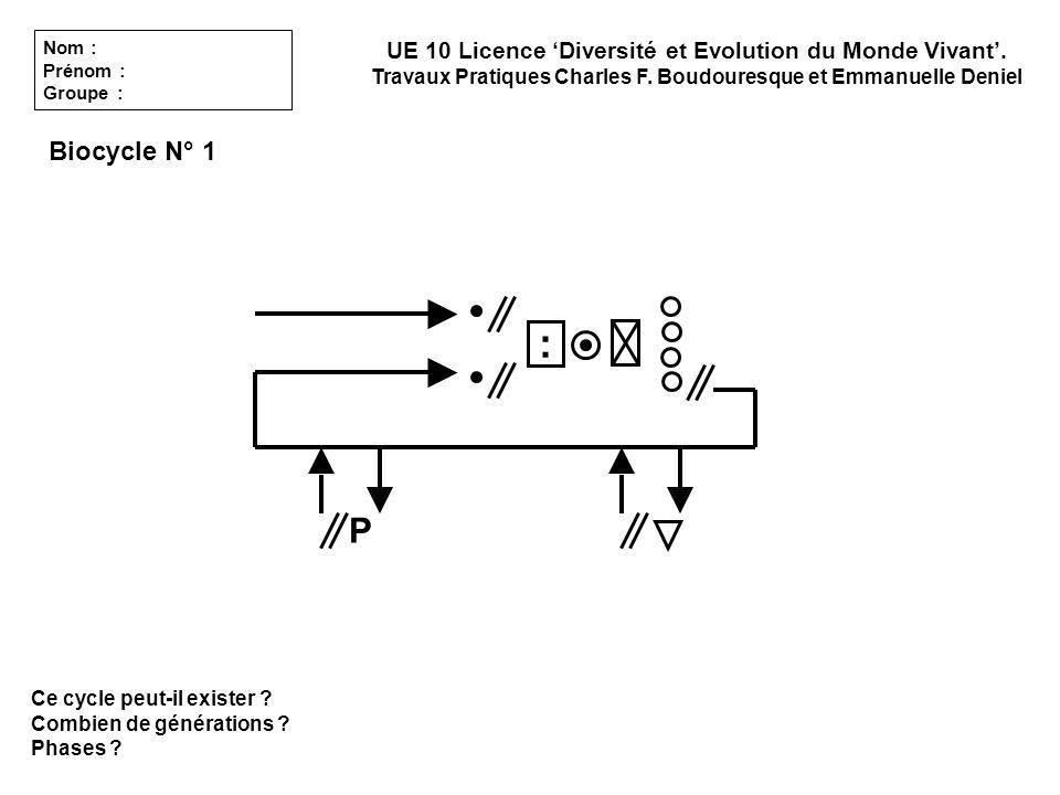 Ce cycle peut-il exister ? Combien de générations ? Phases ? Biocycle N° 1 UE 10 Licence Diversité et Evolution du Monde Vivant. Travaux Pratiques Cha